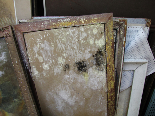 artwork mold damp storage