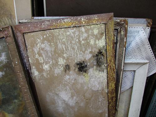 artwork mold damp storage