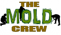 mold-wisconsin-icon
